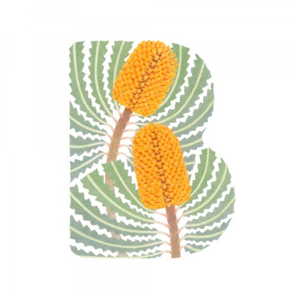 B-Banksia